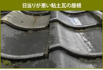 日当りが悪い粘土瓦の屋根