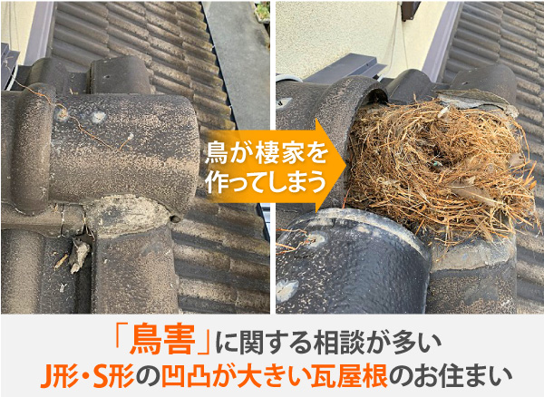 鳥害に関する相談が多いJ形・S形凹凸が大きい瓦屋根のお住まい