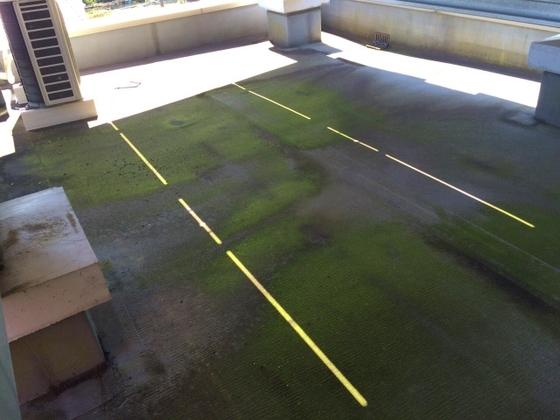屋上の床施工前