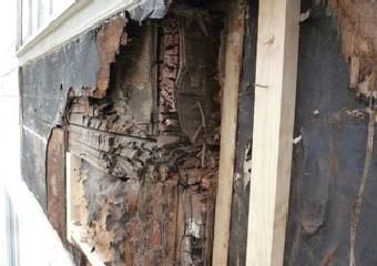 外壁の腐食した防水紙や断熱材